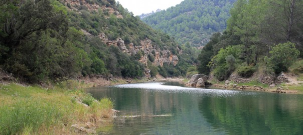 pantano-ulldecona-cabecera-rio