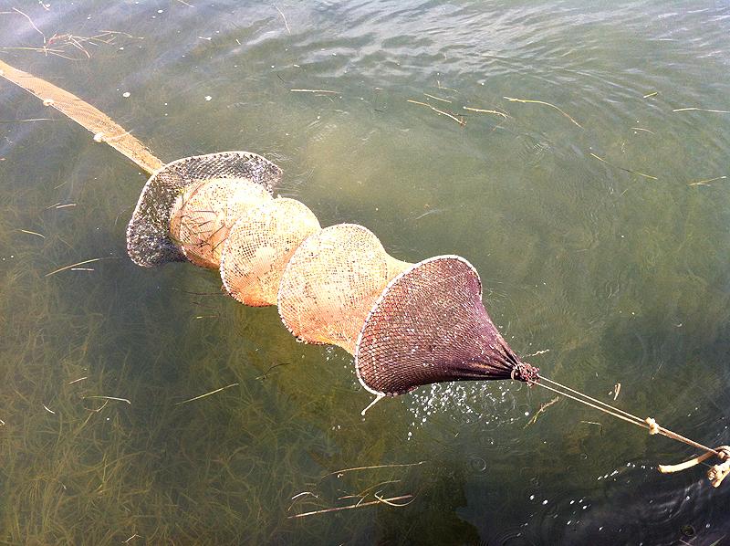 Una parte de la red para pescar con lo gànguil