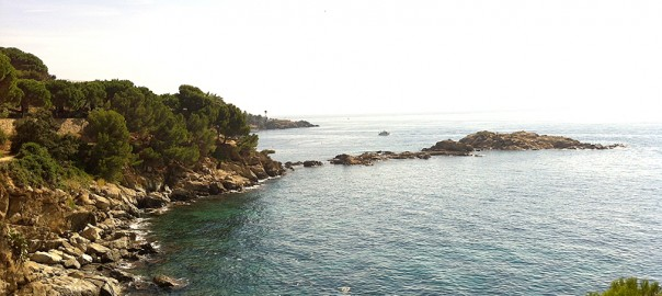 Típica imagen de rocas y pinos hasta el agua de la Costa Brava