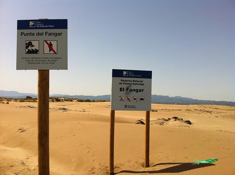 delta-ebro-el-fangar-reserva-natural