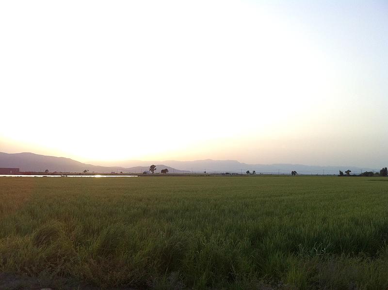 Panorama del Delta del Ebro
