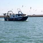 Pesquero llegando al puerto de Sant Carles de la Ràpita