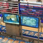 Subasta digital de pescado
