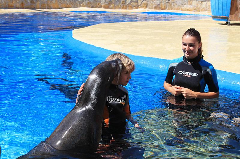 Niños en la piscina con leones marinos, MundoMar