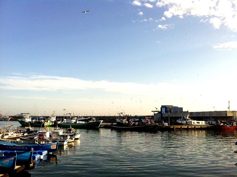 Puerto de Cambrils en la Costa Daurada