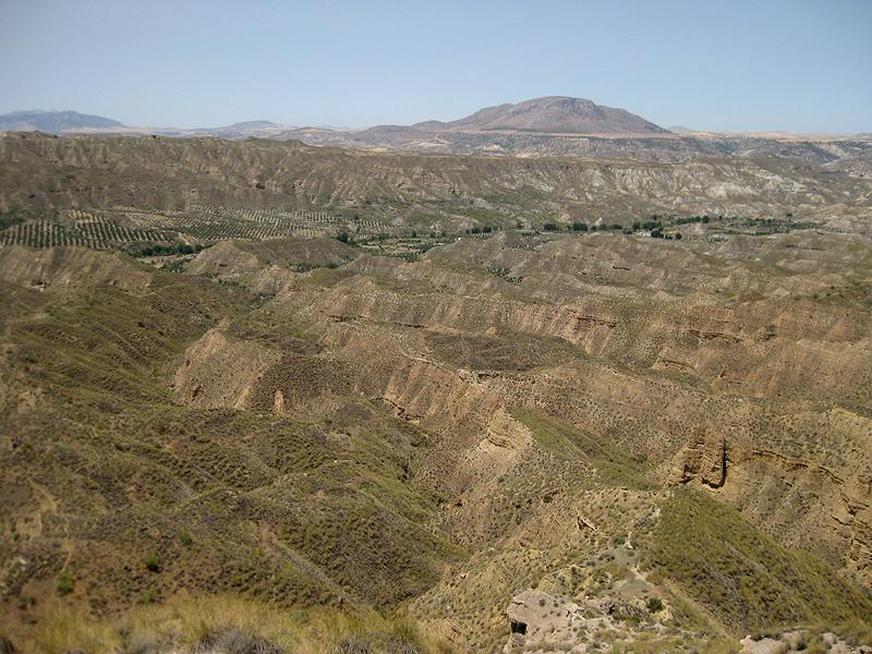 Un panorama con escasa vegetación
