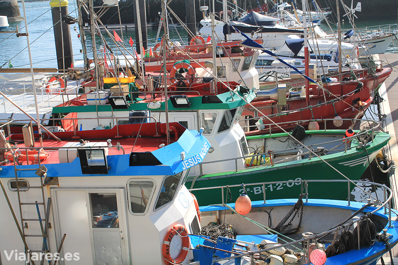Pesqueros en el puerto de Lekeitio