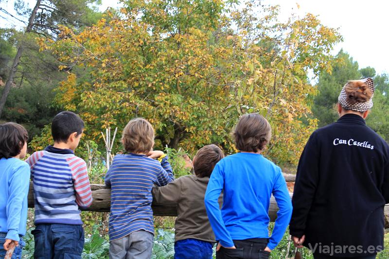 Visita con niños a la granja de Can Casellas