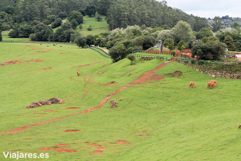 cantabria-cabarceno-con-ninos-elefantes-manada