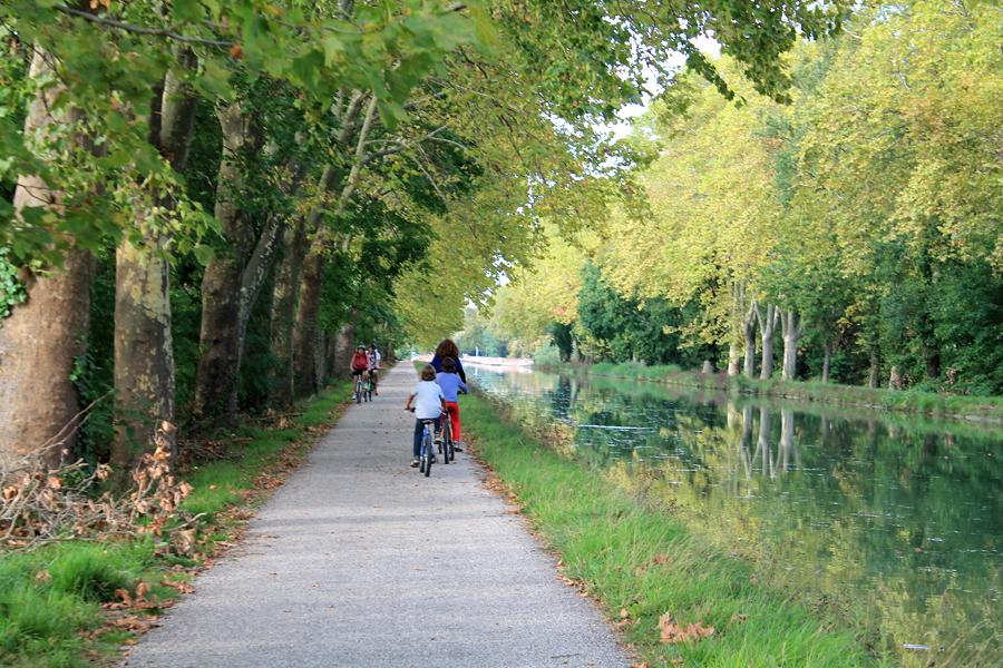 Paseando en bicicleta por un túnel de árboles