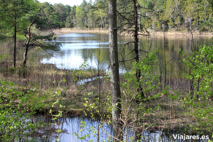Lago en primavera cerca de Kristiansand