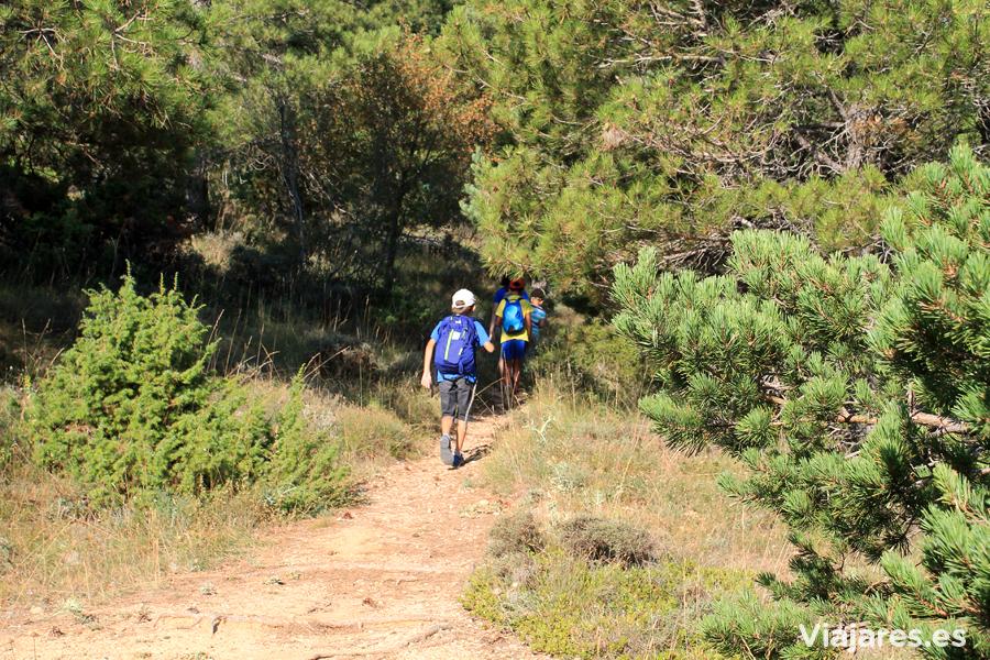 Parte del sendero a la Roca Corbatera atraviesa el bosque
