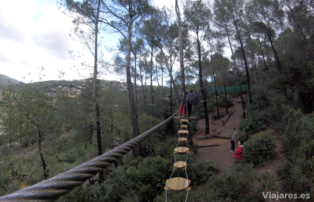 Circuito de aventura en los árboles
