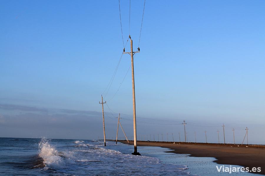 Postes de electricidad en el Trabucador - Delta del Ebro