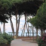 La zona verde del Pinar de Perruquet proporciona una agradable sombra