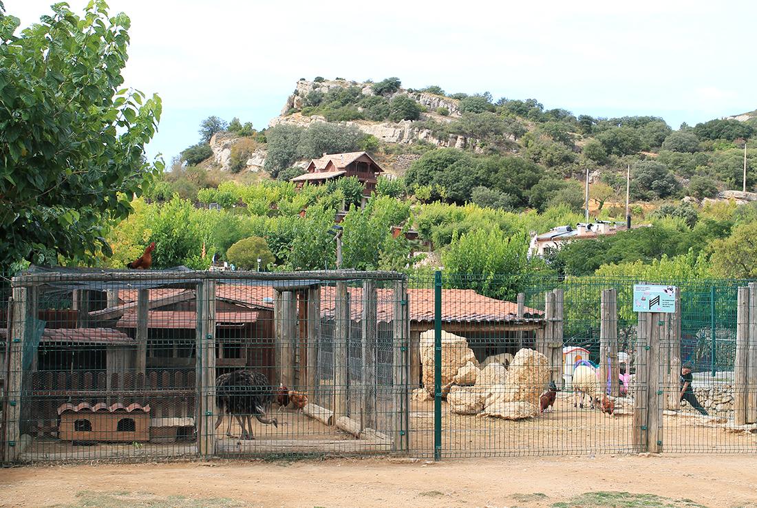Espacio dedicado a los animales de granja
