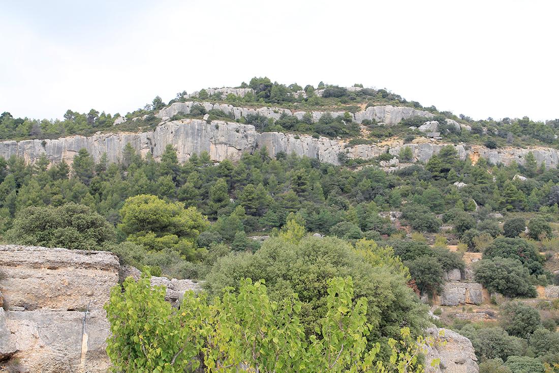 El Camping Serra de Prades está rodeado de naturaleza