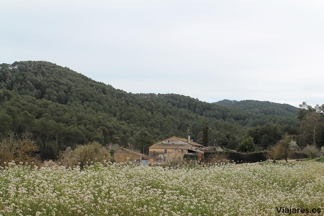 Can Borrell es una de las masías dentro del Parc Natural de Collserola
