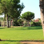 Espacios abiertos y campos para hacer deporte