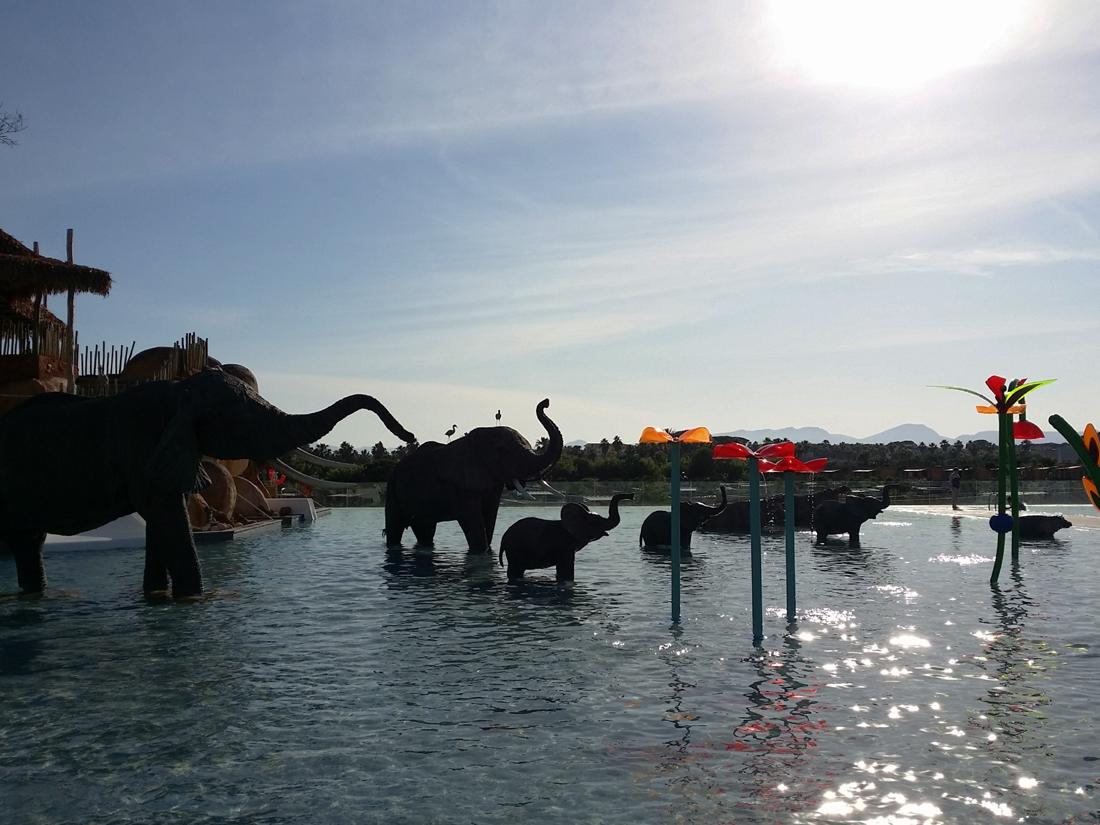 Agradable atardecer con las siluetas de animales africanos recortadas