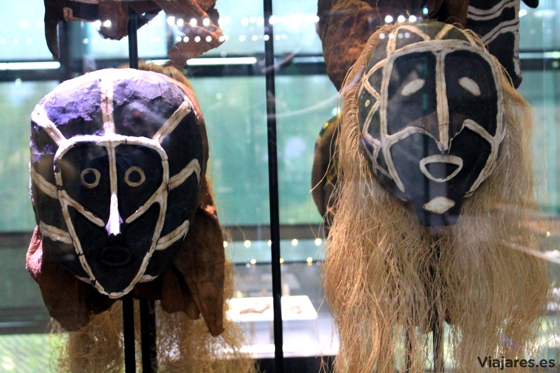 Hay también un apartado dedicado a la antropología en el Muséum de Toulouse