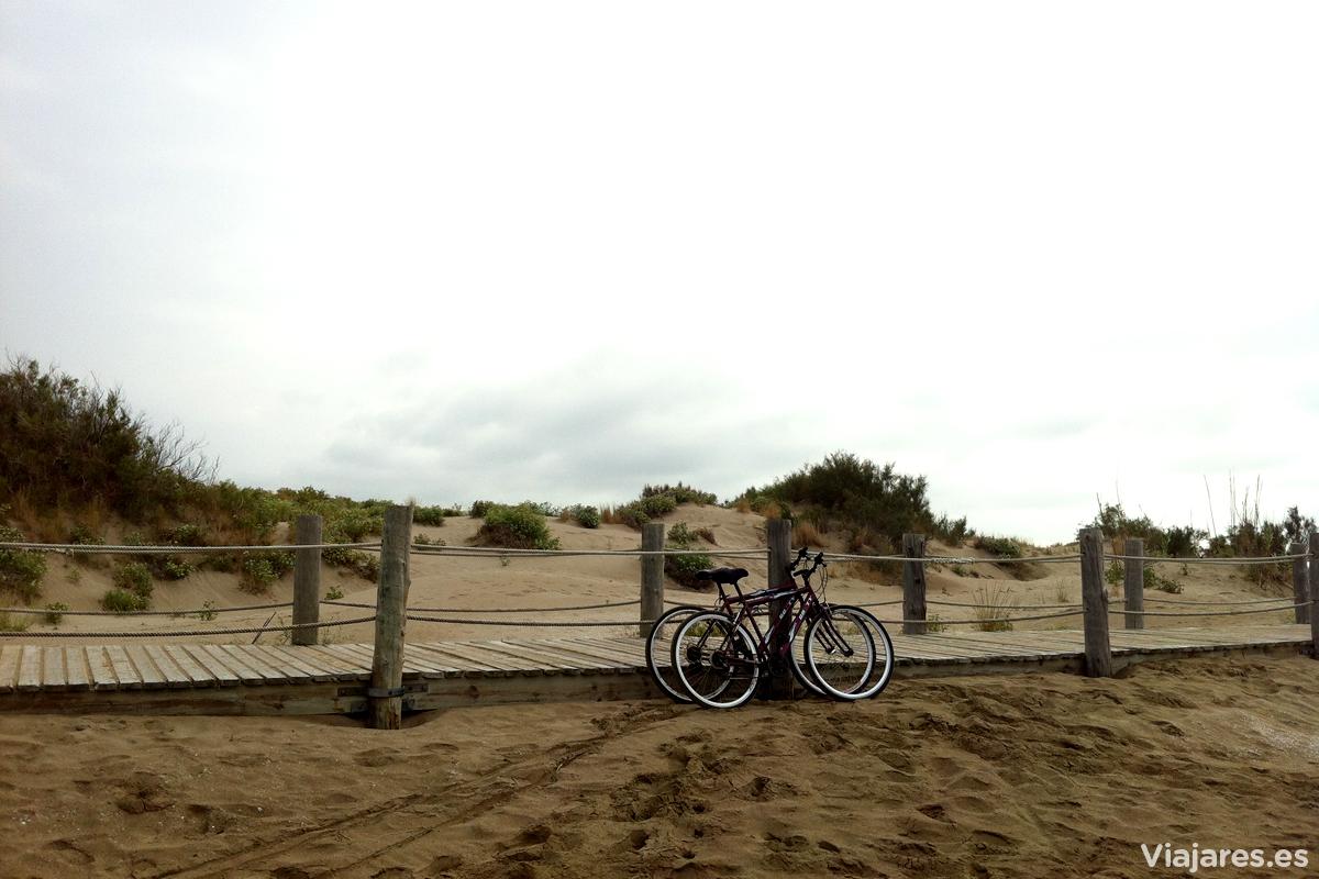 Bicicletas en el Delta del Ebro