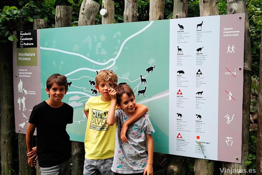 Centro de fauna salvaje en MónNatura Pirineus