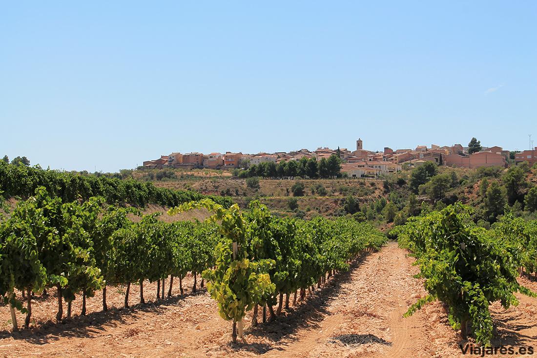 Perfil del pueblo de Bot entre viñedos