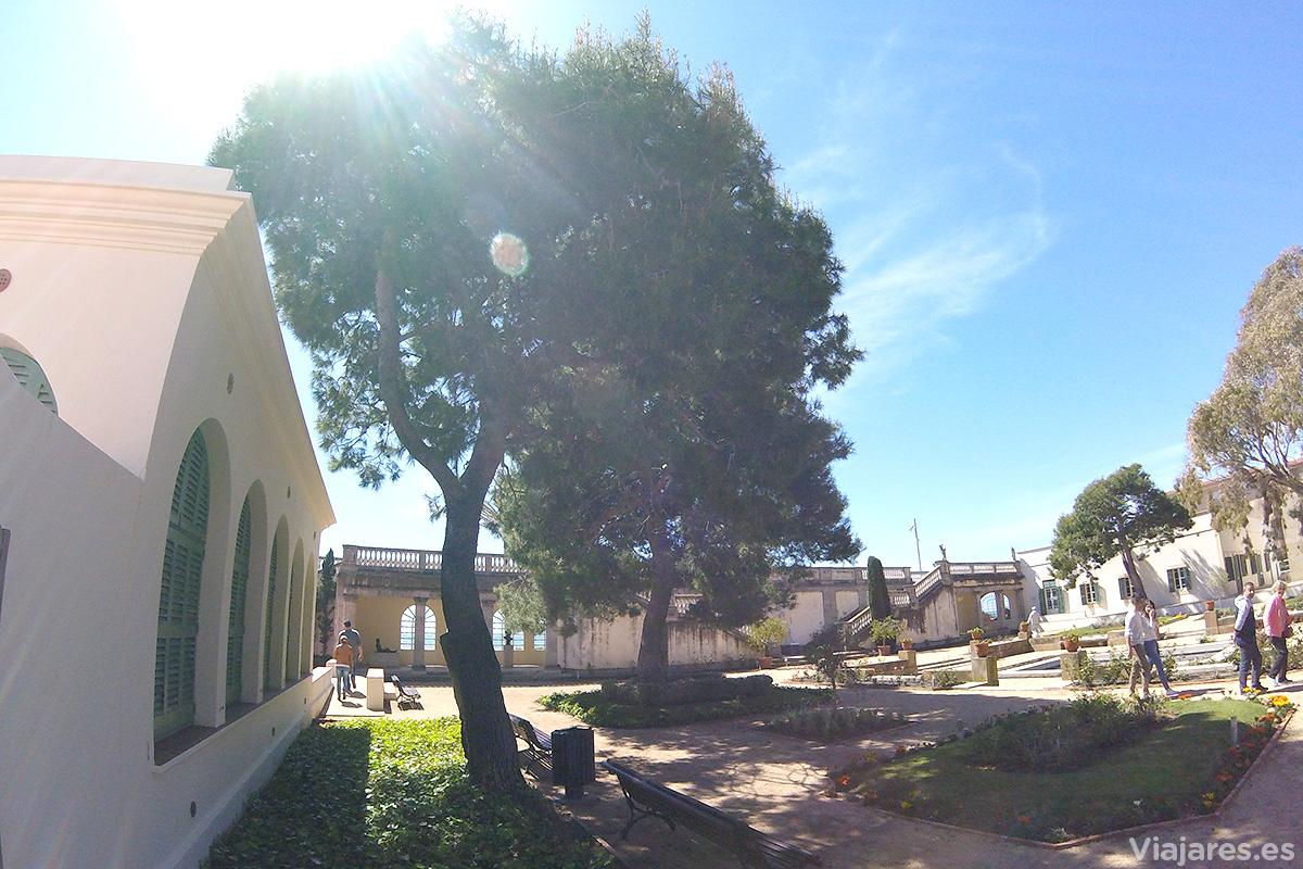 Jardines en el Museo Pau Casals