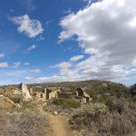 Mata-redona abandonada en el Montsià