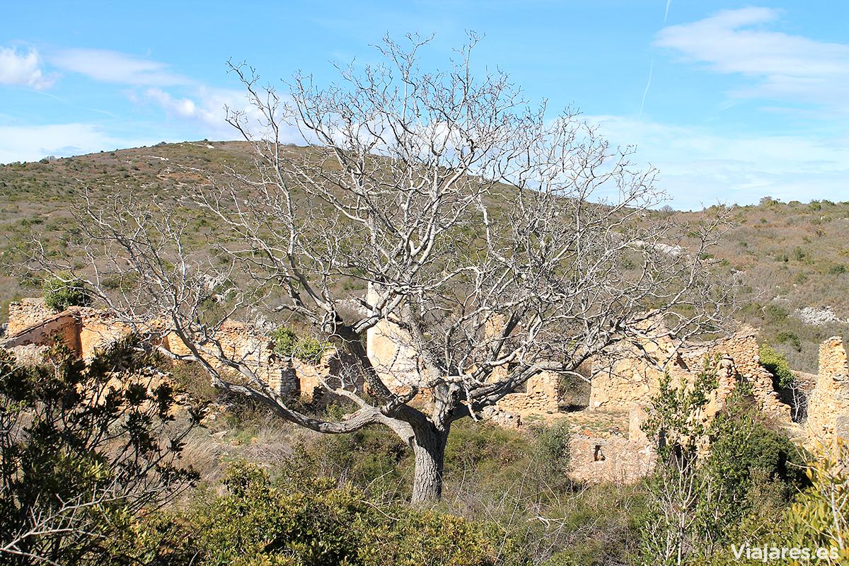 Antigua masía de Mata-redona