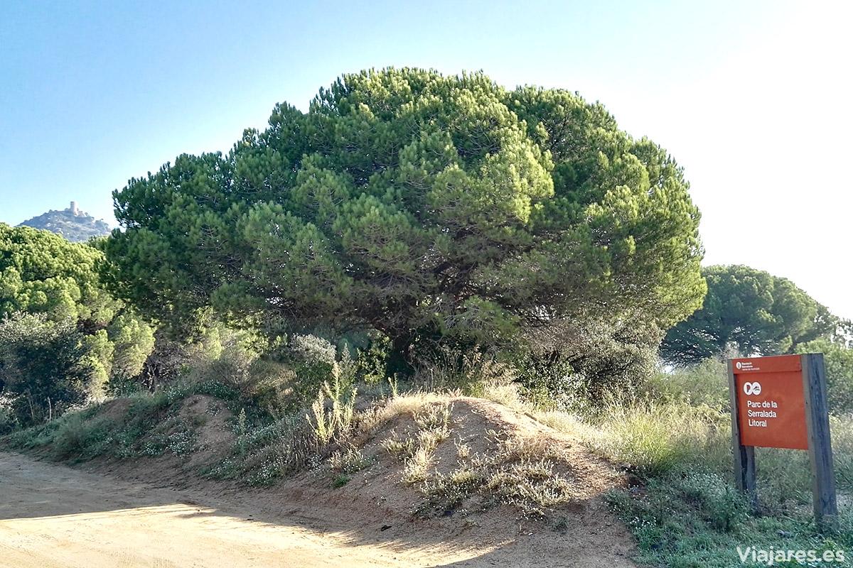 Parque de la Serralada Litoral