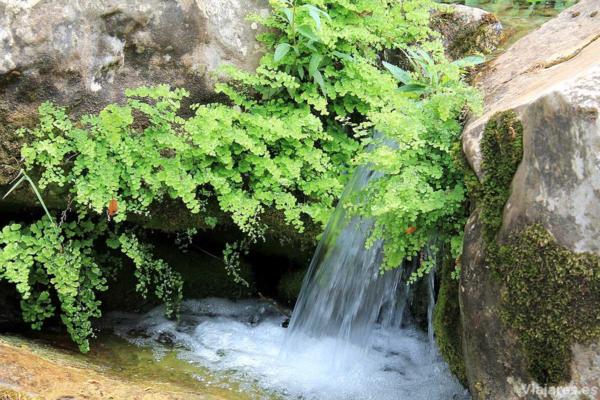 Aguas cristalinas y puras en Els Ports