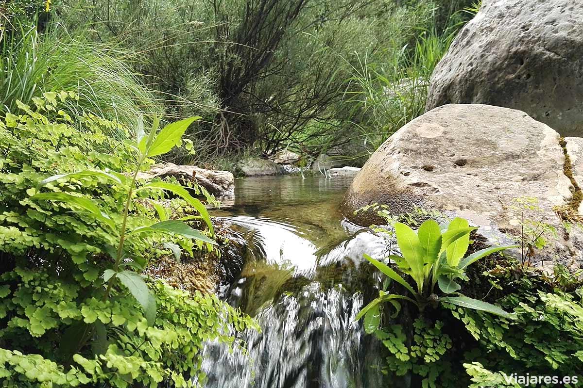 Aguas puras que atraviesan Els Ports