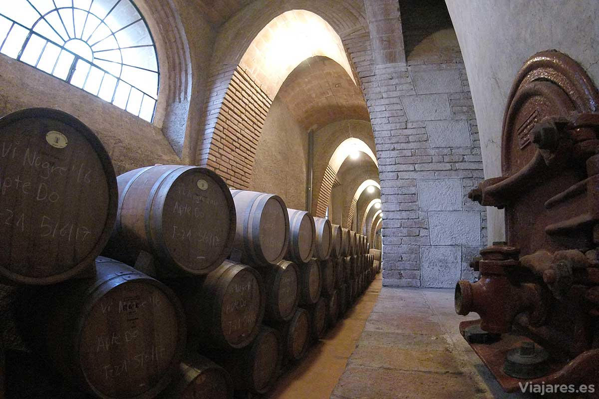 Interior de la bodega o celler