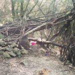 Cabañas que encontramos en el bosque