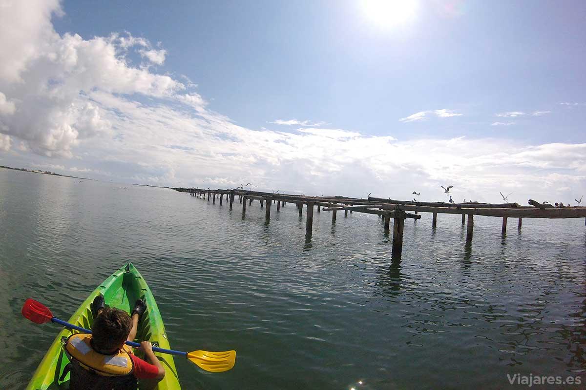 Navegando en kayak por el Delta del Ebro